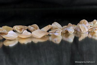 Set van grote tot ca 19 mm Abaloneschelp kralen  K246_320
