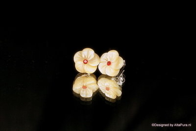 Mooie verzilverde oorstekkers van Abalone schelp met Granaat O110